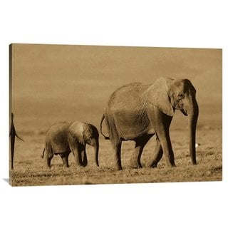 Global Gallery Tim Fitzharris 'African Elephant Motherand Calf, Kenya' Stretched Canvas Art