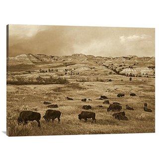 Global Gallery Tim Fitzharris 'American Bison Herd Grazing on Praire, Theodore Roosevelt NP, North Dakota' Stretche