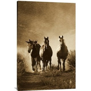 Big Canvas Co. Konrad Wothe 'Group of Four Horses Approaching Camera, Oregon' Stretched Canvas Art