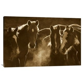 Big Canvas Co. Pete Oxford 'Horse Herd at Annual Round-up, Backlit, Ecuador' Stretched Canvas Art