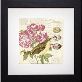 Paula Scaletta 'Bird Study 3' Framed Artwork