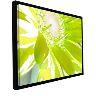 Herb Dickinson 'Gerber Time IV' Floater-framed Gallery-wrapped Canvas