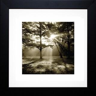 Steven Mitchell 'Wild Forest' Framed Artwork