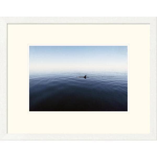 Global Gallery Flip Nicklin \'Bottlenose Dolphin surfacing, Shark Bay ...