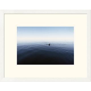 Global Gallery Flip Nicklin 'Bottlenose Dolphin surfacing, Shark Bay, Australia' Framed Art Print