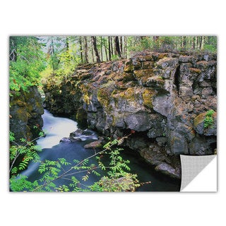 ArtApeelz Dean Uhlinger 'Rogue River Gorge' Removable wall art graphic
