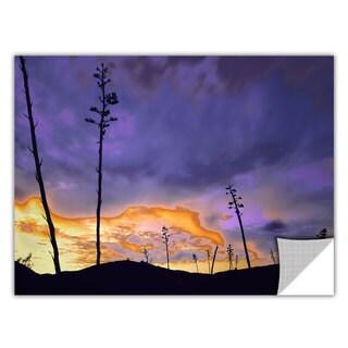 ArtApeelz Dean Uhlinger 'Borrego Desert Dawn' Removable wall art graphic