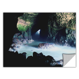 ArtApeelz Dean Uhlinger 'Sea Lion Cave' Removable wall art graphic