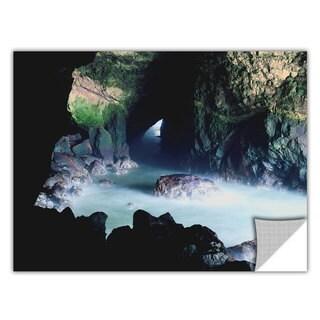 ArtApeelz Dean Uhlinger 'Sea Lion Cave' Removable wall art graphic