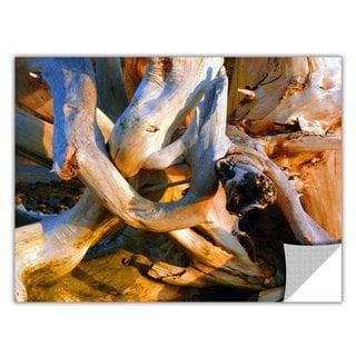 ArtApeelz Dean Uhlinger 'Drift Log Detail' Removable wall art graphic