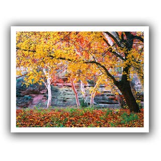 Dean Uhlinger 'Aravaipa Canyon' Unwrapped Canvas - Multi