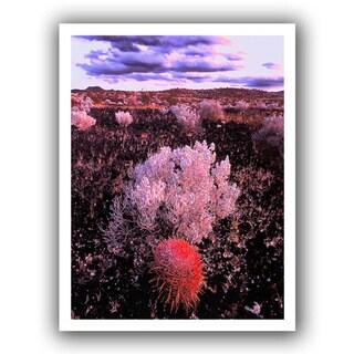 Dean Uhlinger 'Mojave Desert Dusk' Unwrapped Canvas