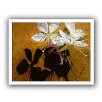Dean Uhlinger 'Spring Shadows' Unwrapped Canvas