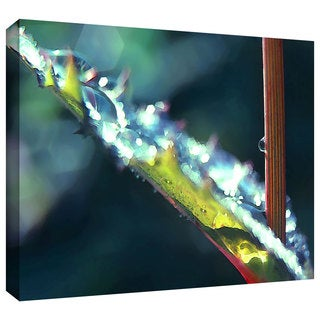 Dean Uhlinger 'After Garden Rain' Gallery-wrapped Canvas