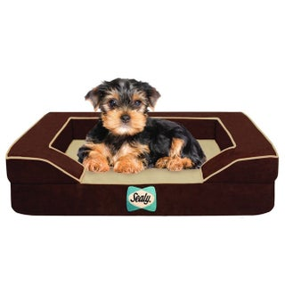 Sealy Lux Small Cooling Memory Foam Pet Bed (2 options available)