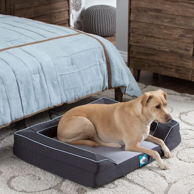 Sealy Lux Medium Cooling Memory Foam Pet Bed