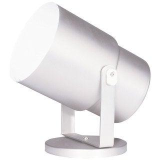 Gloss White Single-light Wall/ Ceiling Spot Light or Floor Pod