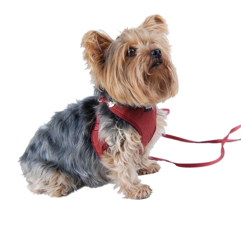 ANIMA Comfort Soft Pet Dog Puppy Leash Lead With Mesh Har...