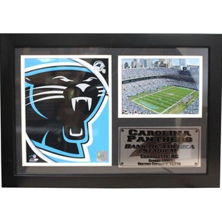 Carolina Panthers 12x18 Photo Stat Frame