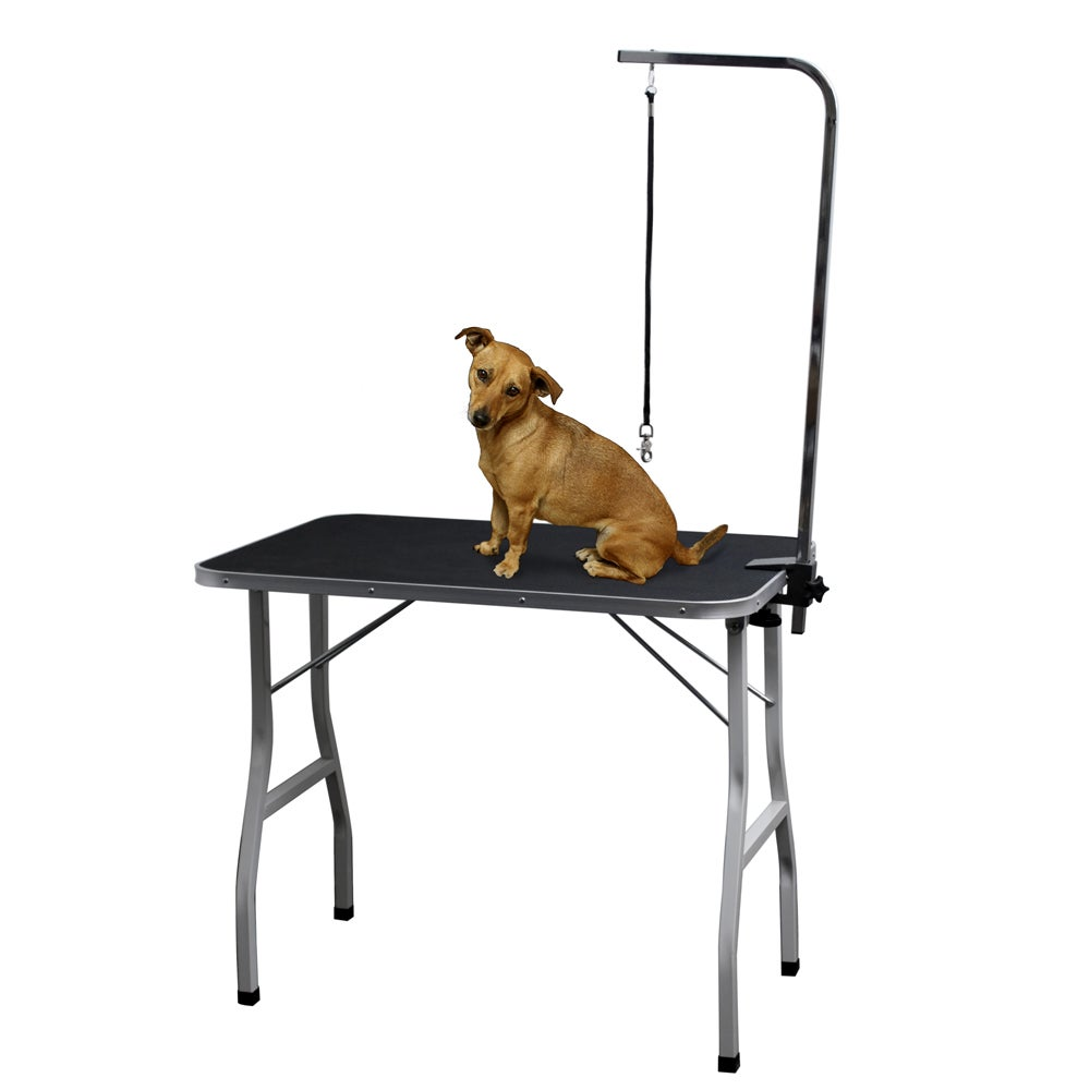 OxGord Pet Grooming Table with Leash Attachment, Grey metal