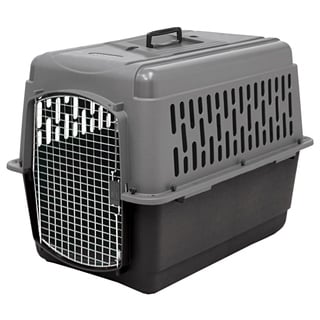 Aspen Pet Porter Traditional Plastic Pet Kennel