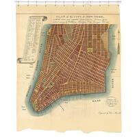 New York Map Shower Curtain