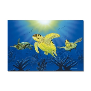 David Dunleavy 'Turtle Dreams' Canvas Wall Art
