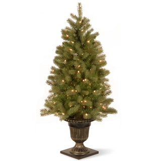 4-foot Downswept Douglas Fir Entrance Tree with Clear Lights