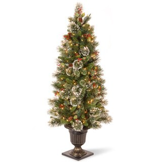 5-foot Wintry Pine Entrance Tree with 100 Clear Lights