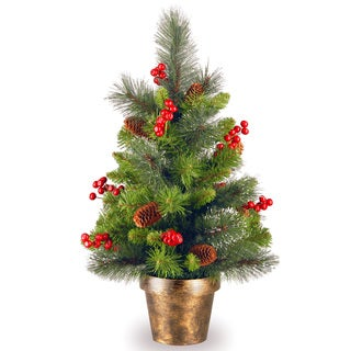2-foot Crestwood Spruce Tree