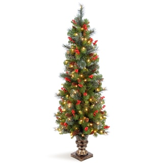 5-foot Crestwood Spruce Entrance Tree with Clear Lights