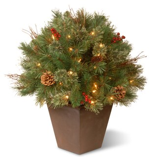 24-inch Glistening Pine Porch Bush with Clear Lights