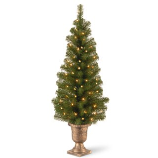 4-foot Montclair Spruce Entrance Tree with Clear Lights
