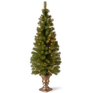 5-foot Montclair Spruce Entrance Tree with Clear Lights