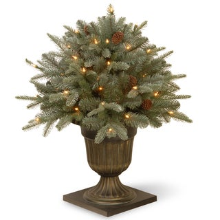 26-inch Frosted Arctic Spruce Porch Bush with Clear Lights