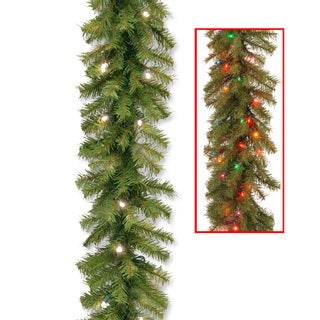 Norwood Fir 9-foot Garland with 50 Dual Warm White/ Multi Battery Operated LED Lights and Timer
