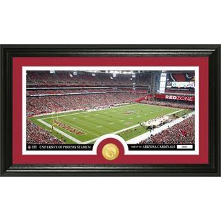 """NFL Arizona Cardinals """"Stadium"""" Bronze Coin Panoramic Photo Mint"""