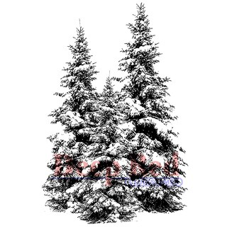 """Deep Red Cling Stamp 2""""X3""""-Winter Pines