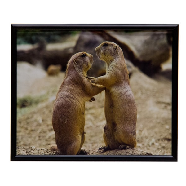Matte Finish Metal 8x10 Picture Frame