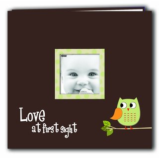 Pioneer Postbound Green Baby Owl Memory Book (12x12)