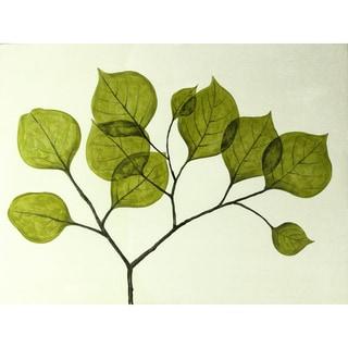 Aurelle Home 'Leaves' Summer Canvas Art Print