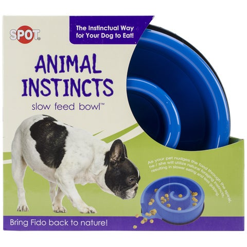 "Animal Instincts Slow Feed Bowl 10""-Blue"
