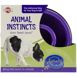 "Animal Instincts Slow Feed Bowl 10""-Purple"