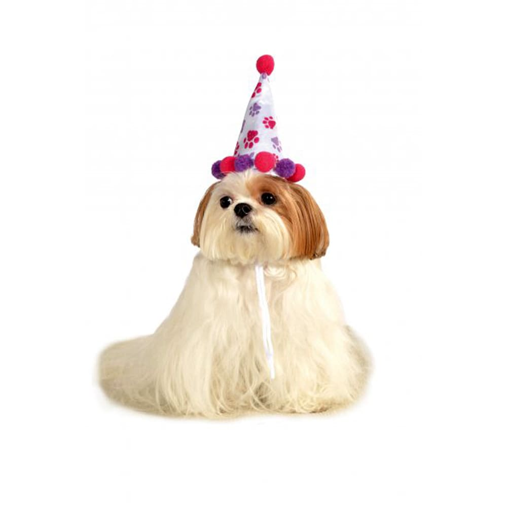 Rubie's Pet Birthday Hat (Medium/Large), Multi