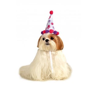 Rubies Pet Birthday Hat