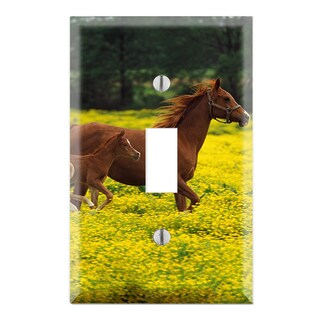 Baby Horse Running with Mom Decorative Wall Plate Cover