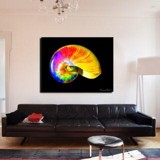 Bruce Bain 'Rainbow Shell' Canvas Wall Art