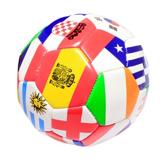 Size 5 Indoor/ Outdoor Soccer Ball