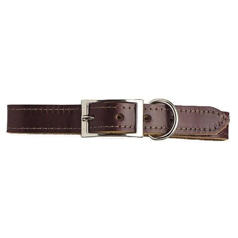 Scott Pet Latigo Leather Border-Stitched Dog Collar