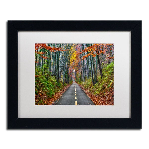 Cateyes Paths Framed Matted Art Free Shipping Today